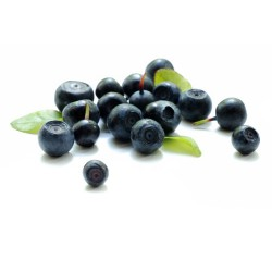 Blueberry 100 g, Freeze-dried